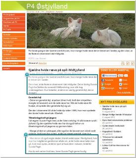 zoologiske museum København åbningstider smerter i underlivet under samleje